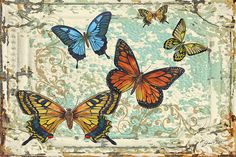 I uploaded new artwork to fineartamerica.com! - 'Lovely Butterflies On Tin Tile-5' - http://fineartamerica.com/featured/lovely-butterflies-on-tin-tile-5-jean-plout.html via @fineartamerica
