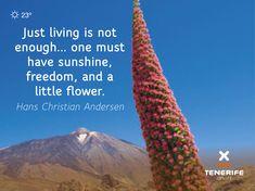 Flora and fauna Hans Christian, Tenerife, Island, Flora And Fauna, Enough Is Enough, Freedom, Sunshine, Frases, Canary Islands