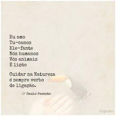 """""""Ligação"""", por Saulo Pessato"""
