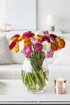 Ranunkler kommer i mange fargenyanser av rosa, orange og hvitt.