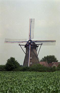 Deurne, Vlierden, Molenhuisweg 4a Beltmolen Johanna-Elisabeth, Molenhuisweg 4a Jos Pé (fotograaf) 1989