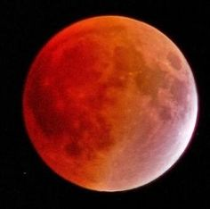Four Blood Moons Dates - April 15 and October 8 in 2014 and April 4 and September 28 in 2015. The Day of the Lord draws nigh!  If you haven't...