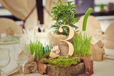 Forest themed wedding - woodland table numbers