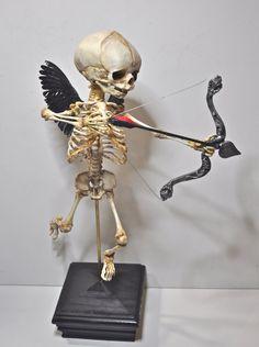 Cupid Skeleton Display via Etsy