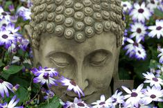 """""""All that we are is the result of what we have thought. The mind is everything. What we think we become."""" ~ Buddha"""