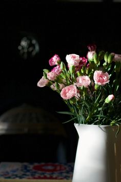 pink carnations | Lisa Hjalt