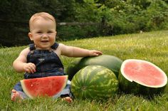 watermelon photo shoot one year session