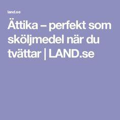 Ättika – perfekt som sköljmedel när du tvättar | LAND.se