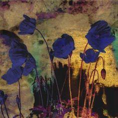 Odilon Redon (francés, 1840-1916) - amapolas azules