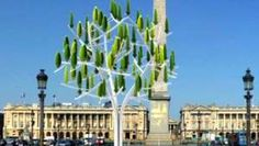 Wind Tree uses micro-turbine leaves to generate electricity - Reuters