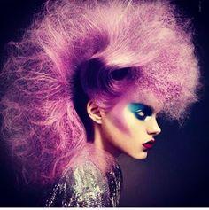 Purple hawk