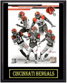 2013 Cincinnati Bengals Picture Plaque (Black) BS Sports,http://www.amazon.com/dp/B00F5IHWIA/ref=cm_sw_r_pi_dp_Fl3Gsb1HFFYN9K1J