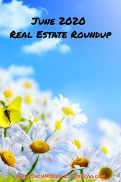 Great real estate reads from June 2020.