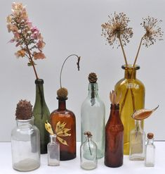 Old bottles are great for display. Here I had fun using them with an assortment of dried flowers and seeds.) Related Nibs post- Reuse- Egg Crate Garden Note Gourd Display Garden Note Terrarium Decorating Fireplace Mantel A Hippie Vibe Wedding Table, Fall Wedding, Our Wedding, Dream Wedding, Wein Parties, Floral Wedding, Wedding Flowers, Bottle Display, Old Bottles