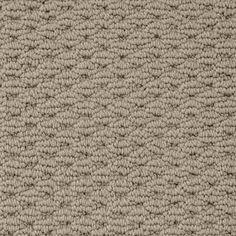 CASUALLY SOFT BONE Berber/Loop TruSoft® Carpet - STAINMASTER®