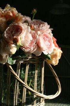 the Polished Pebble: Old Fashion Romantic Roses