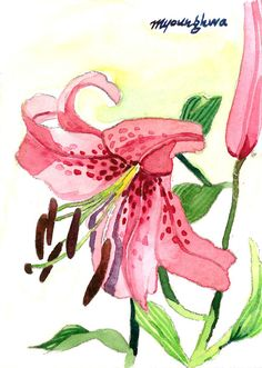 ACEO Limited Editions 6/25- Lilies, Art print of an original ACEO painting by Anna Lee, Home deco idea, Small gift for housewarming party