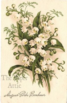 Fab find Lily of the Valley Antique Vintage French Chromo Postcard
