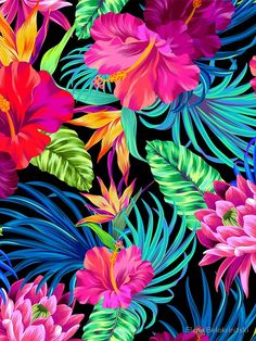girly iphone wallpaper - Drive You Mad Hibiscus Pattern Graphic TShirt Tropical Wallpaper, Summer Wallpaper, Colorful Wallpaper, Flower Wallpaper, Pattern Wallpaper, Trendy Wallpaper, Colorful Backgrounds, Screen Wallpaper, Wallpaper Backgrounds