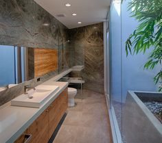 Garden bath with Rainforest marble walls and bamboo filled sky wells.  Architecture and Interior Design by Matrix Design Studio