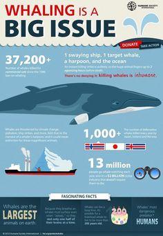 #stop #overfishing