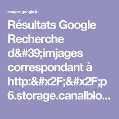 Résultats Google Recherche d'imjages correspondant à http://p6.storage.canalblog.com/66/32/687304/53323481.jpg