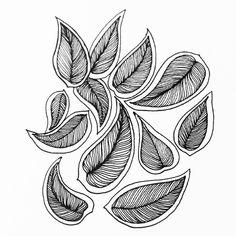 Daily drawing 270 #zentangle #zentangleart #zen #zenart #ink #inkdrawing #dailydrawing #drawing #draweveryday2017 #dailyart #art #artoftheday #art #tumblr #leaves #leafhttps://www.instagram.com/p/BV2veNhAo9P/
