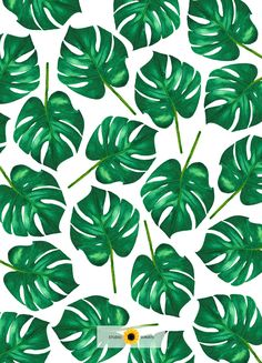Leaf Phone Wallpaper by Studio Sonate (watercolor illustrations) Watercolor Illustration, Plant Leaves, Illustrations, Studio, Wallpaper, Phone, Plants, Instagram, Design