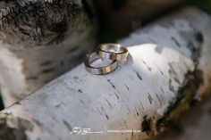 wedding rings on birch tree