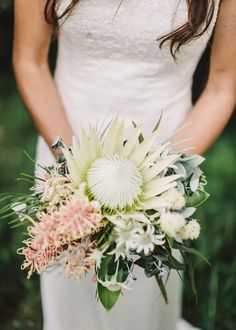 Ivory King Protea centre stage with pale pink grevillea, white flannel flower #whitewedding #Australianflowers #creambouquet