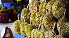 Are There Health Risks When Eating Durians?   food for life tv   Video Recipes, Local Dishes, Kitchen Hacks