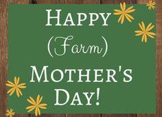 Farm Mom - A dedicat