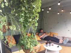 Urban Jungle Inspiratie : Urban jungle interior inspiration interieur inspiratie green