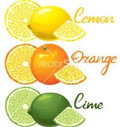 Citrus fruits vector 554273 - by Pazhyna on VectorStock® Lime Green Kitchen, Lemon Kitchen Decor, Green And Orange, Orange Color, Citrus Garden, Fruit Vector, Green Theme, Oranges And Lemons, Pink Grapefruit