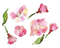 Pink cherry blossom by Debbie #watercolor #illustration