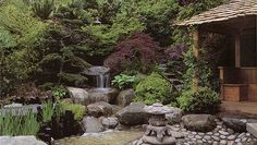 Японский сад камней 5