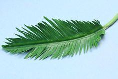 Make Tiny Realistic Palms From Paper or Fabric: Add Points to the Ends of the Leaves on the Model Palm Frond
