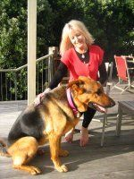 Video: Learn how to train your dog.   Techniques for your dog – regardless of age or breed.