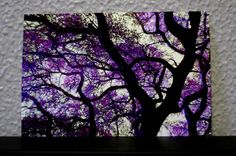 Purple Leaves Tree Dark Branches Candy Colored by LadyAlchemy13, $16.00