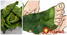 Kel je úžasná zelenina s vysokou nutričnou a nízkou kalorickou hodnotou. Je veľmi účinný v mnohých oblastiach – trávenia, vyprázdňovania, vylučovania, v oblasti svalov, kostí, kĺbov, nechtov, vlasov, nervového systému. Účinky kelu na zdravie Podporuje obranyschopnosť Ochraňuje bunky pred pôsobením radikálov Podporuje trávenie Podporuje stolicu Prečisťuje hrubé črevo Močopudné účinky odvodňuje nadbytočnú vodu Prečisťuje obličky... Mojito, Plant Leaves, Plants, Medicine, Diet, Plant, Planets