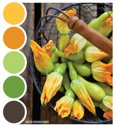 SQUASH SCHEME - color palette   Pastel Feather Studio: it's time to shine ♥
