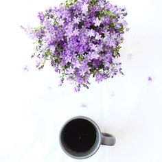 Good days start with coffee and you. Thank you for supporting us all the time.#hesta#hestaorganic
