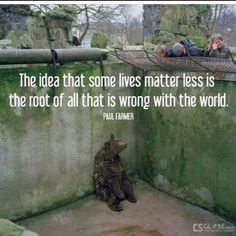 This saddens me. Animals are not less important.