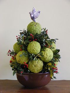 I want to learn to make an osage orange (colonial) Christmas centerpiece