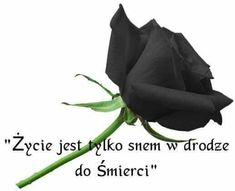 Sad Quotes, Nostalgia, Humor, Feelings, Words, Image Search, Black Roses, Polish Sayings, Quotes