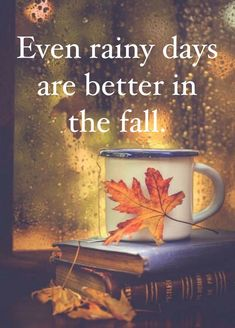 This is true! Autumn Scenes, Autumn Cozy, Autumn Aesthetic, Seasons Of The Year, Happy Fall Y'all, Fall Pictures, Hello Autumn, Fall Harvest, Autumn Inspiration
