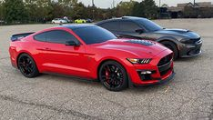 Mustang Gt500, Ford Mustang Shelby, Shelby Gt500, Dodge Charger Hellcat, Bone Stock, Trucks, American Muscle Cars, Ford Models, Used Cars