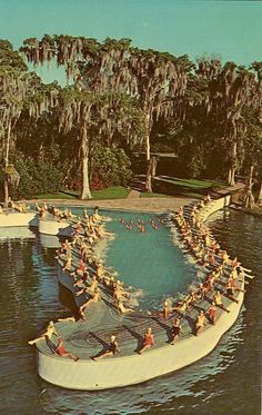 Cypress Gardens's Florida-shaped pool. It was used in an Esther Williams movie and the boat tour used to go right past it. I always wanted to swim in it.