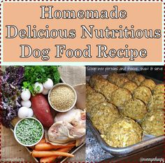 Ruby stewbie diabetic dog food recipe dog food recipes homemade delicious nutritious dog food recipe homesteading the homestead survival forumfinder Choice Image