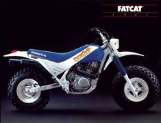"""The """"FatCat"""" was a dirt machine with automatic transmission and ballon tires. Pretty harmless little machine for scooter around as a beginner."""
